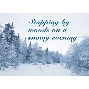 Christmas Card - Snowy Evening