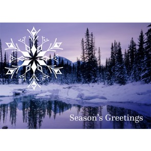 Christmas Card - Frost